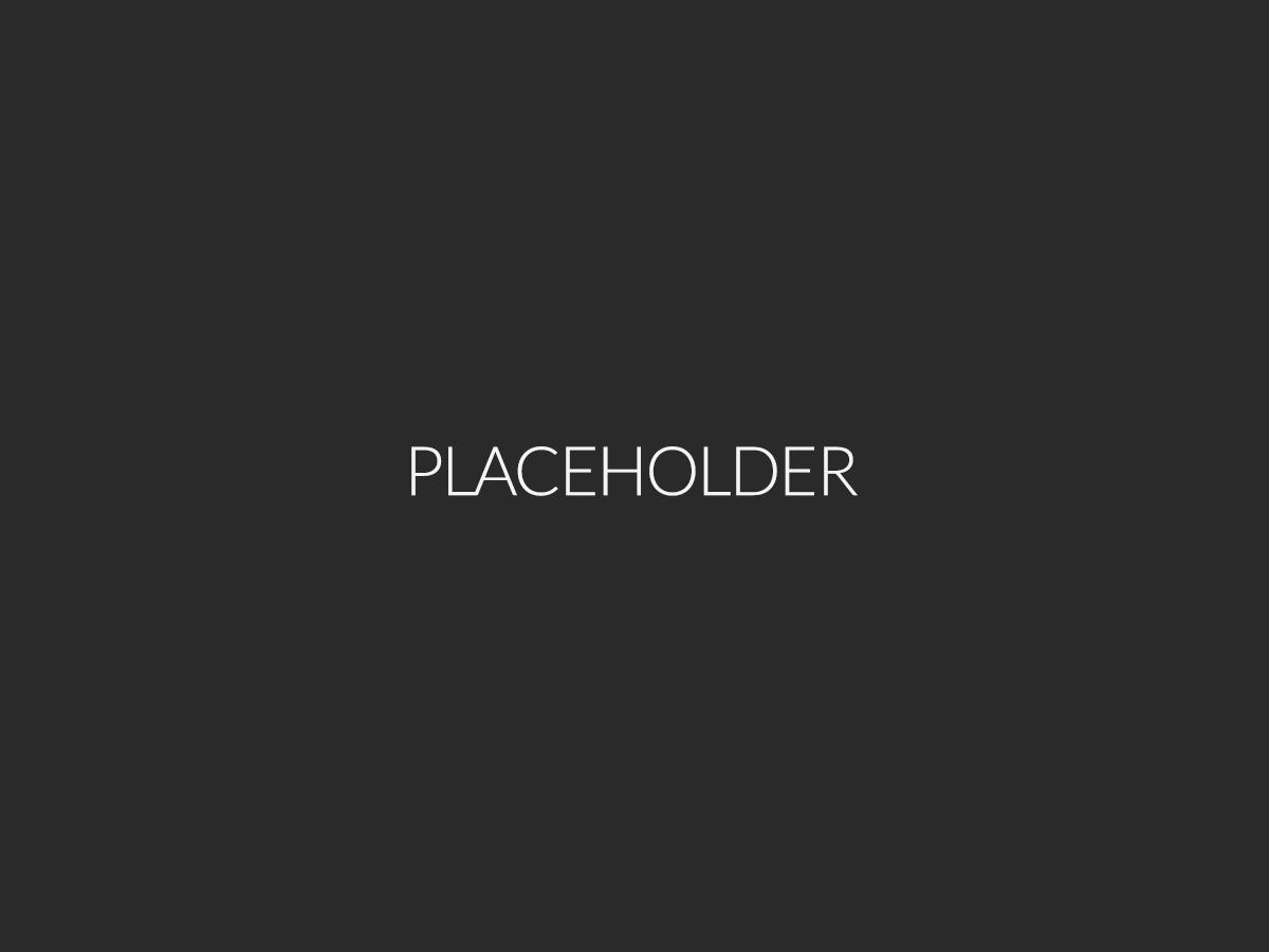 placeholder6
